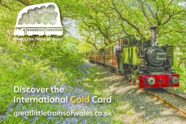 1-Gold-Card-1